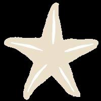 Stjerneforlaget